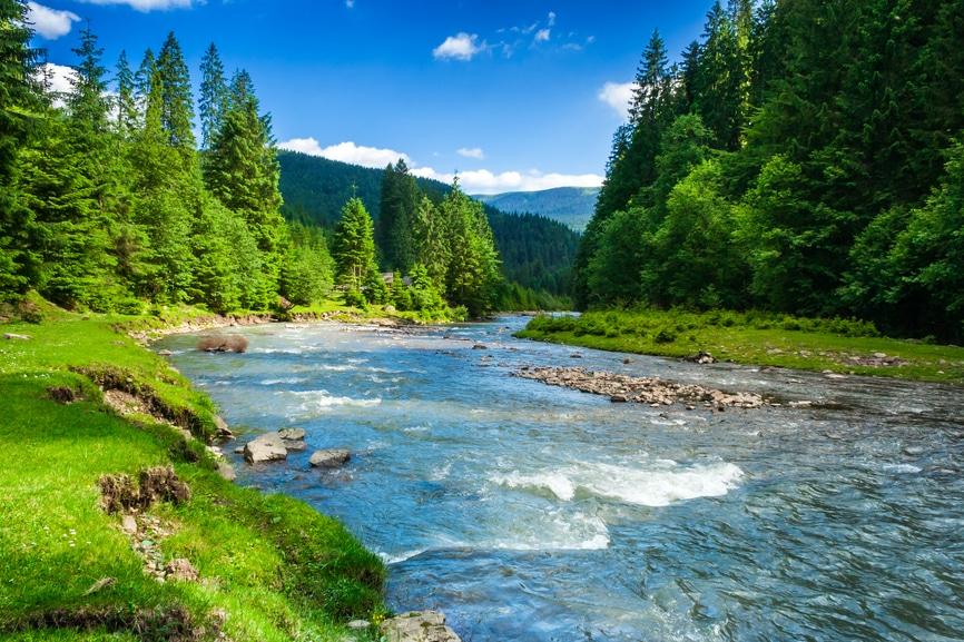Fluss in den Bergen inmitten einer Baumlandschaft