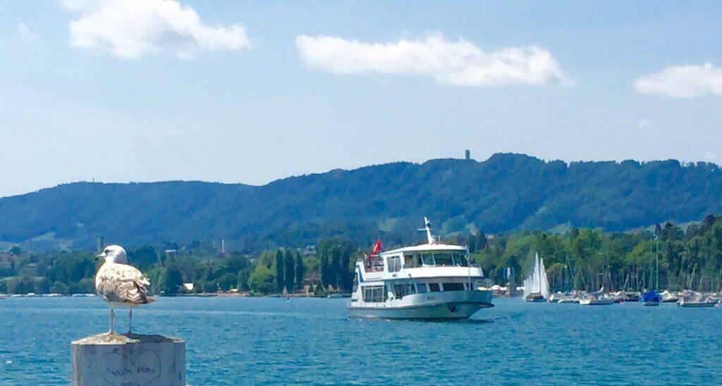 Zürichsee-Schiff nähert sich dem Steg